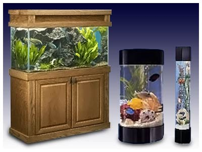 Servicing installing and selling aquariums for 20 years Beautiful aquariums for home